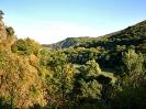 Valea Arieșului